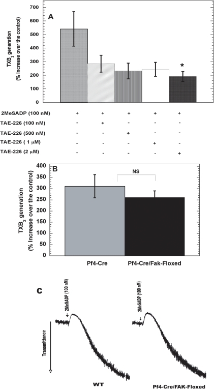 Evaluation of FAK as a common signaling effector molecule regulating thromboxane generation downstream of integrins and G12/13 pathways.Non-aspirin-treated, washed human platelets were pre-treated with varying concentrations of TAE-226 for 5 minutes at 37°C (A) and murine platelets from WT and Pf4-Cre/Fak-Floxed mice (B) were stimulated with 2MeSADP (100 nM) for 3.5 minutes and TXB2 levels were analyzed as described for Figure 1. Aggregation tracings were measured from WT and Pf4-Cre/Fak-Floxed mice and representative tracings are shown (C). The values are representative of 3 independent experiments mean ± S.E.M (n = 3). The data were analyzed by ANOVA and student t-test, * P≤0.05 was considered significant.