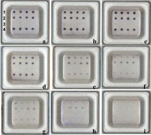 Detection limit assay on the microarray with serially diluted cultures of Edwardsiella tarda. Row 1: dotting with the probe U735. Row 2: dotting with the probe Edta. Row 3: dotting with the probe poly(A). Row 4: dotting with the probe U1352. E. tarda suspensions in serial dilutions were used as samples for microarray detection. Bacterial concentrations (CFU/mL): (a) 4 × 109; (b) 4 × 108; (c) 4 × 107; (d) 4 × 106; (e) 4 × 105; (f) 4 × 104; (g) 4 × 103; (h) 4 × 102; (i) 4 × 101. Positive signals resulted from four independent PCR amplicons.