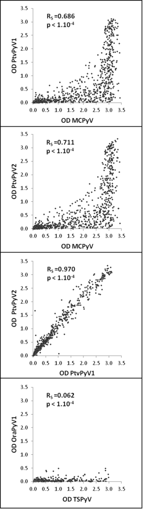 Correlation between MCPyV and PtvPyV reactivity and between TSPyV and OraPyV1 reactivity.Correlation between ELISA reactivity of human serum samples against the different VLPs. Each point represents one serum sample. Correlation coefficients (Spearman) were determined using XLStat software.