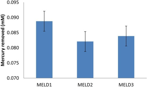 MELDI, MELD2 and MELD3 were grown in LB medium having a known concentration of 25 mg. kg-1 HgCl2.Mercury/MA- 2000 (AAS) was used to detect the mercury reductase activity of the strains. Bars plot mean ± SD of three replicate experiments.