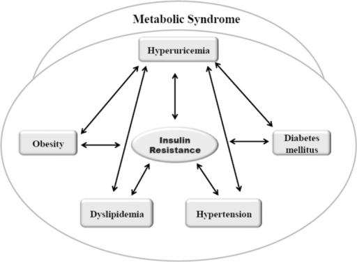 Multiple bidirectional association between higher level of uric acid and different component of metabolic syndrome. Insulin resistance is a central component that is associated with hyperuricemia and further development of metabolic syndrome. Hyperuricemia may develop metabolic syndrome by inducing endothelial dysfunction and also through activating proinflammatory pathways.
