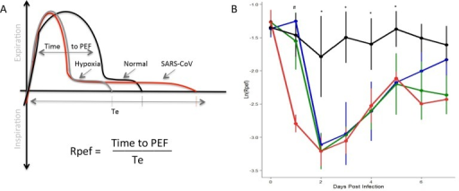 The shape of the exhalatory flow curve (Rpef) indicated changes following infection with SARS-CoV.(A) Rpef measures the ratio of time to peak expiratory follow (PEF) relative to the total expiratory time. For both hypoxia (gray) and SARS-CoV infection (red), the time to PEF decreases relative to normal (black). However, the length of breath expands following SARS-CoV infection, causing significant drop in Rpef values relative to baseline. (B) Following SARS-CoV infection of C57BL/6J animals, we identified significant differences in Rpef across a range of doses relative to mock animals (black = mock, blue = 10^3 SARS, green = 10^4, red = 10^5; four animals per group). Significant effects of treatment on Rpef was determined via partial F-test. Following significance assessment, those treatment groups different from each-other were assessed by Tukey's HSD post-hoc analysis. All such differences are denoted at a p<0.05 level, and are marked as follows: * = mock different from all infected, # = 10^5 dose different from all others.