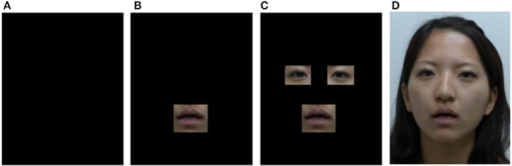 Examples of the four types of visual stimuli used in Experiment 2. (A) No image (audio only). (B) Mouth-only presentation. (C) Eyes and mouth presentation. (D) Full-face image presentation. All of these images were presented with a congruent or incongruent voice in the experiment.