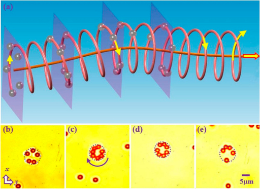 Experimental observation of 3D microparticle spiraling driven by a triply-charged singular beam propagating along a hyperbolic secant trajectory.(a) Schematic illustration of guiding and rotating particles along the bending trajectory; (b–f) Snapshots of trapped microparticles from videos taken when at different transverse planes. In each plane, the particles are spinning due to transfer of angular momentum from the beam (see Media 2 for an example), but the particles actually undergo spiral motion should they not be pushed against the holding glass. Dashed circle marks the main lobe of the singular beam.