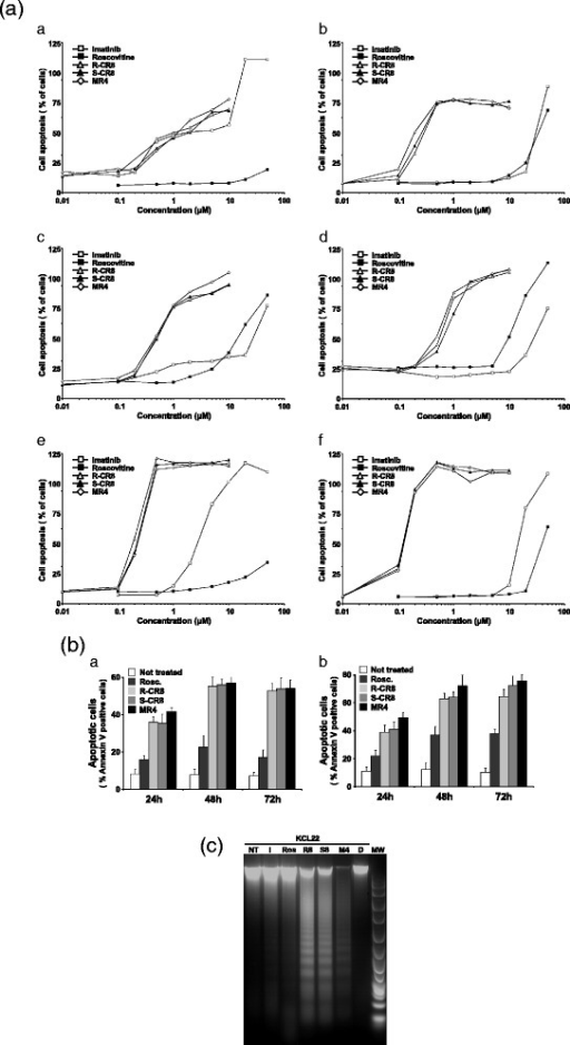 Assessment of apoptosis as cell death mechanism induced by CDKs inhibitors. a Analysis of Annexin V-positive cells on Imatinib-sensitive K562 (a), KCL22 (c), and BaF3 Bcr-Abl WT (e) and Imatinib-resistant K562-R (b), KCL22-R (d), and BaF3 Bcr-Abl T315I (f) CML cell lines treating with increasing concentrations of drugs for 48 h. Negative and positive controls of cell viability were obtained with etoposide-treated or untreated cells, respectively. b Analysis of K562 and KCL22 Annexin V-positive cells treated for 24, 48 or 72 h with 10 μM drugs. c DNA fragmentation analysis of KCL22 cells treated by CDK inhibitors. NT not treated, I Imatinib, R Roscovitine, R8 R-CR8, S8 S-CR8, MR4 MR4, D DMSO, MW molecular weight