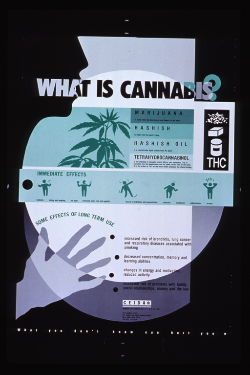 <p>Black, gray, and white poster with multicolor lettering.  Title near top of poster.  Largest visual image is a silhouette of a human profile, including an outstretched hand, on the left side of the poster.  Another image is an illustration of a cannabis plant, directly below the title and next to explanations of marijuana, hashish, hashish oil, and THC.  In the center of the poster, there are five abstract human figures acting out various effects of cannabis.  The lower portion of the poster is dominated by a list of the effects of long-term use of cannabis.  Contact information and note at bottom of poster.</p>