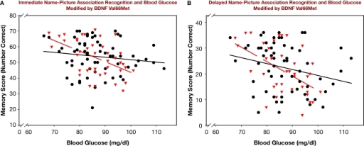 Name-picture association recognition and blood glucose modified by BDNF Val66Met genotype. BDNF Val66Met Met carriers (red triangles, broken regression line) are compared to BDNF Val homozygotes (black circles, solid regression line). (A) Immediate recognition. (B) Delayed recognition.
