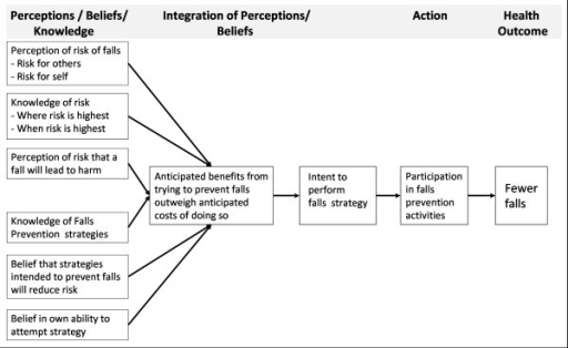 Health Belief Model adapted to falls prevention educati | Open-i