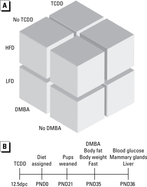 Schematic of treatment groups (A) and time line (B). Impregnated B6 and D2 iparous mice were treated with 1 μg/μL TCDD or 95%/5% olive oil/toluene (vehicle) at 12.5dpc. Dams received HFD or LFD at parturition, and pups were weaned onto the same diets.