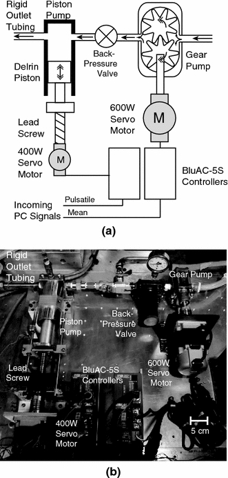 Diagram (a) and photograph (b) of the gear–piston pumping system