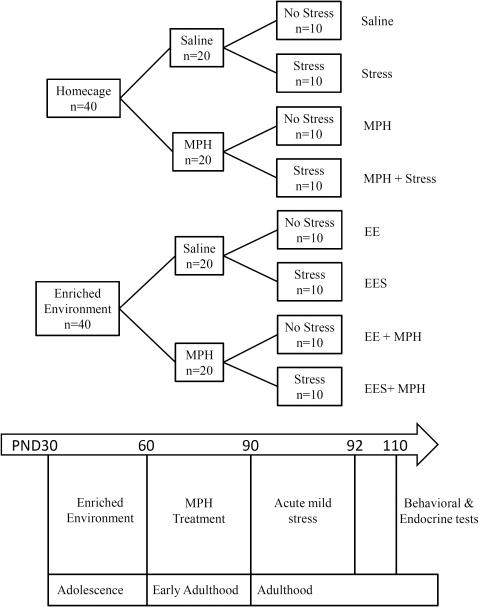 Schematic Diagram Of Experimental Design And Procedures Open I