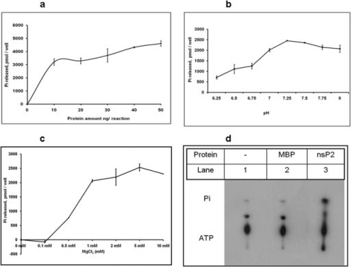ATPase activity of CHIKV-nsP2T.At different enzyme concentrations: CHIKV-nsP2T protein was incubated at different concentrations (5 ng to 50 ng) in a 50 µl reaction containing 50 mM MOPS at pH 7.25, 1 mM ATP, 1 mM MgCl2, at 37°C for 30 min. Released phosphate was quantitated as described in the experimental procedures. Effect of pH on ATPase activity: CHIKV-nsP2T protein was incubated in a 50 µl reaction containing 50 mM MOPS at pH 6.25–8.0, 1 mM ATP, 1 mM MgCl2, at 37°C for 30 min. Released phosphate was quantitated as described in the experimental procedures. Effect of MgCl2 concentration on ATPase activity: CHIKV-nsP2T protein was incubated in a 50 µl reaction containing 50 mM MOPS at pH 7.25, 0–5 mM MgCl2, 1 mM ATP, at 37°C for 30 min. Released phosphate was quantitated as described in the experimental procedures. Analysis of released phosphate on TLC: Reaction was carried out in 20 µl containing 1 nM CHIKV-nsP2T, 50 mM MOPS (pH 7.25), 1 mM MgCl2, 1 mM ATP, 1 µCi of [γ-32P] ATP, incubated at 37°C for 30 min and 1 µl of the mixture was analyzed by TLC and processed for autoradiography.