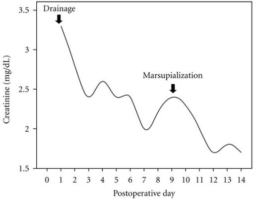 Renal function improved after percutaneous drainage and subsequent marsupialization of lymphocele.