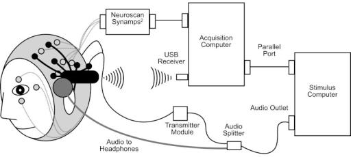 Eeg recording setup block diagram — photo 2