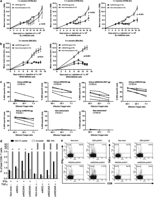 Evaluation of the ability of different immunogens to prime HCV NS3/4A-specific tumor-inhibiting responses after DNA immunization. Groups of 8–10 C57BL/6J or BALB/c mice were either left untreated or were given one (a), two or four monthly (b) gene gun (gg) immunizations of 2 μg plasmid DNA of the indicated immunogens. At 2 weeks after the last immunization, mice were subcutaneously inoculated with 1 × 106 NS3/4A-expressing EL-4 (a) or NS3/4A-expressing SP2/0-Ag14 (b) cells. Tumor sizes were measured through the skin at days 6–19 after tumor inoculation. Values are given as the mean tumor size±s.e.m. Also given is the P-value obtained from the statistical comparison of immunized and control groups using the area under the curve (AUC) and analysis of variance. In (c), the NS3-specific lytic activity after two immunizations with indicated immunogens in groups of five C57BL/6 and IFNγR2−/− mice are shown. In (d), the percentage of IFN-γ- or TNFα-producing CD8+ T cells in groups of five immunized C57BL/6 mice (five mice per pool) with indicated immunogens. In (e and f), representative dot plots from each group of mice showing the IFN-γ- and TNFα-positive CD8+ T cells.