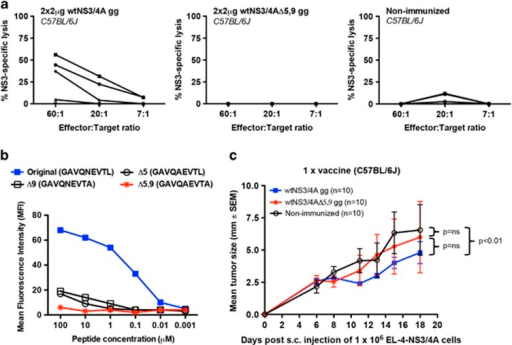 Evaluation of in vitro detectable CTLs and tumor-inhibiting responses in C57BL/6J mice immunized with wtNS3/4A-pVAX1 or wtNS3/4AΔ5,9-pVAX1 plasmid DNA. (a) Groups of five C57BL/6J mice were immunized once with 2 μg plasmid DNA using transdermal gene gun (gg) delivery or were left untreated (non-immunized). Two weeks after the last immunization, the NS3-specific lytic activity was determined using peptide-loaded (GAVQNEVTL) RMA-S cells at E:T ratios of 60:1, 20:1 and 7:1 in a standard 51Cr-release assay. Specific lysis above 10% was considered positive. Each line indicates an individual mouse. In (b), the in vitro peptide stabilization of MHC–peptide complexes on transporter associated with antigen processing 2-deficient RMA-S cells transfected with H-2Db is shown. Binding affinities were determined by flow cytometry measuring the mean fluorescence intensity (MFI) for each peptide in descending concentrations. (c) Groups of 10 C57BL/6J mice were either left untreated or were given one gg immunizations of 2 μg wtNS3/4A or wtNS3/4AΔ5,9 plasmid DNA. At 2 weeks after immunization, mice were subcutaneously inoculated with 1 × 106 NS3/4A-expressing EL-4 cells. Tumor sizes were measured through the skin at days 6–18 after tumor inoculation. Values are given as the mean tumor size±s.e.m. Also given is the P-value obtained from the statistical comparison of wtNS3/4A and non-immunized or wtNS3/4AΔ5,9 and non-immunized or wtNS3/4A and wtNS3/4AΔ5,9 using the AUC and analysis of variance. NS, not significant.