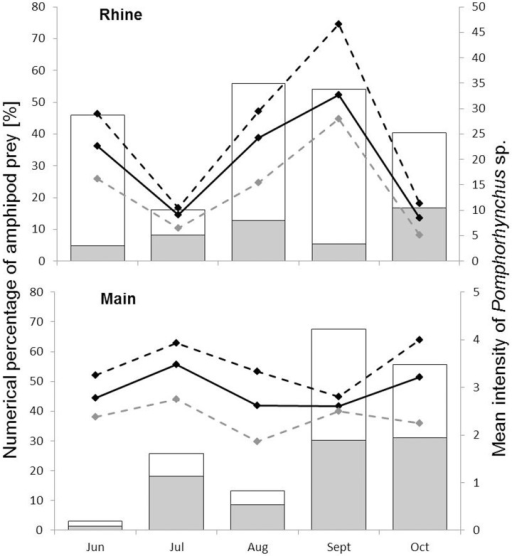 Amphipod prey and infections with Pomphorhynchus sp.Relationship between numerical percentages of D. villosus (grey) and Amphipoda indet. (white) in the gut content of N. melanostomus and mean intensities (mI, black line) of Pomphorhynchus sp. in male (grey dashed line) and female (black dashed line) N. melanostomus. For numbers of individuals please refer to Table S3 and Table S4.