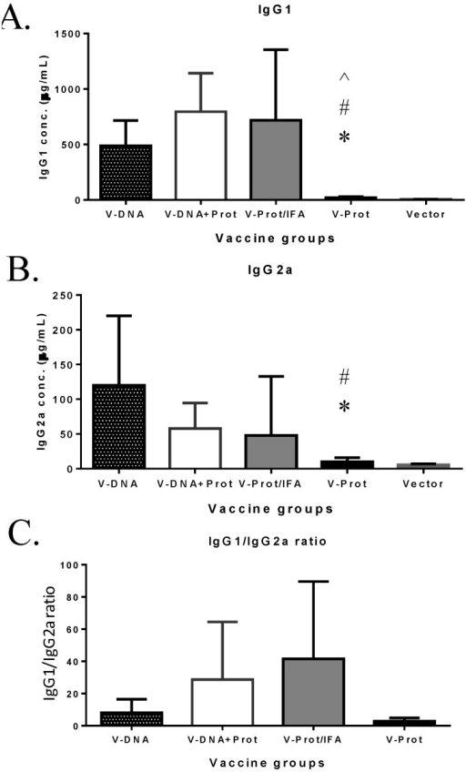 "V-specific IgG1 and IgG2a responses induced by various V vaccine regimens in mice: codon optimized V DNA vaccine alone (V-DNA), V DNA vaccine prime followed by V protein boost formulated with IFA (V-DNA + Prot/IFA), V protein formulated with IFA (V-Prot/IFA), V protein alone (V-Prot), or empty DNA vaccine vector alone (Vector). V-specific IgG1 (Panel A) and IgG2a (Panel B) concentrations were measured by ELISA against V protein in mouse sera collected at 2 weeks after the boost (2nd) immunization. Each bar represents the mean IgG concentrations in each group of 5 mice with standard error. Statistically significant differences (p < 0.05) are indicated as ""*"", ""#"" or ""^"" when comparing V-DNA, V-DNA + Prot/IFA, and V-Prot/IFA groups. Panel C: IgG1/IgG2a ratios determined at 2 weeks after the boost immunization. Each bar represents the mean IgG1/IgG2a ratios in each group of 5 mice with standard error."