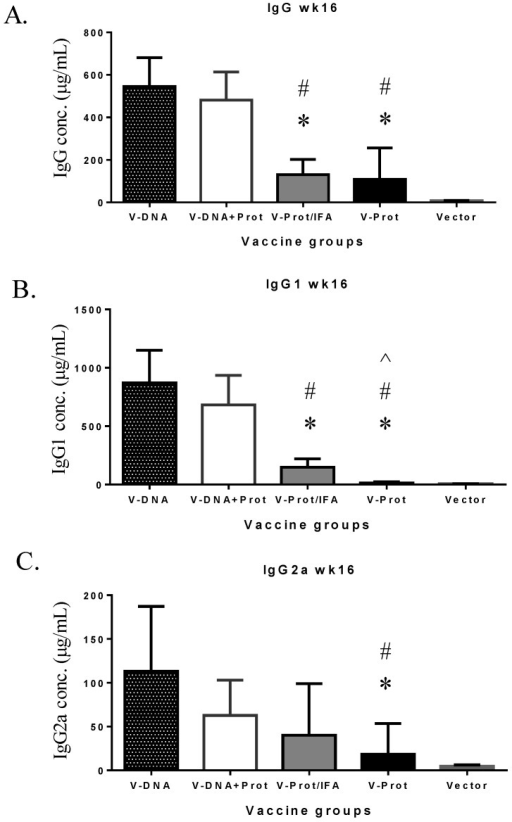 "V-specific IgG (Panel A), IgG1 (Panel B), or IgG2a (Panel C) concentrations measured at 12 weeks after the boost immunization in mice receiving various V vaccine regimens: codon optimized V DNA vaccine alone (V-DNA), V DNA vaccine prime followed by V protein boost formulated with IFA (V-DNA + Prot/IFA), V protein formulated with IFA (V-Prot/IFA), V protein alone (V-Prot), or empty DNA vaccine vector alone (Vector). Antibody titers were measured by ELISA against V protein. Each bar represents the mean IgG concentration in each group of 5 mice with standard error. Statistically significant differences (p < 0.05) are indicated as ""*"", ""#"" or ""^"" when comparing V-DNA, V-DNA + Prot/IFA, and V-Prot/IFA groups."