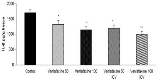 Effect of venlafaxine on IL-1β levels in the rat paws after carrageenan (1%) injections. Venlafaxine (50 and 100 mg/kg, IP or 50 and 100 μg/rat, ICV) was injected 30 min prior to subplantar injection of carrageenan. The results are expressed as mean±SEM. *P<0.05, **P<0.01 versus control group, n=6 in all groups, venlafaxine 50 (venlafaxine 50 mg/kg, IP), venlafaxine 100 (venlafaxine 100 mg/kg, IP), venlafaxine 50 ICV (venlafaxine 50 µg/rat, ICV), venlafaxine 100 ICV (venlafaxine 100 µg/rat, ICV)