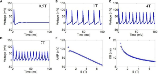 (A–D) Waveforms of neuronal action potentials generated by TMAS under continuous wave ultrasound with different magnetostatic field intensity, (A) 0.5 T, (B) 1 T, (C) 4 T, (D) 7 T. (E–F). The AMP and ISI of action potentials vs. magnetostatic field intensity, (E) AMP, (F) ISI.