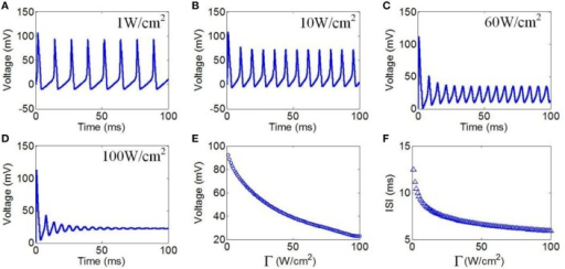 (A–D) Waveforms of neuronal action potentials generated by TMAS under continuous wave ultrasound with different ultrasonic powers, (A) 1 W/cm2, (B) 10 W/cm2, (C) 60 W/cm2, (D) 100 W/cm2. (E,F). The AMP and ISI of action potentials vs. ultrasonic powers, (E) AMP, (F) ISI.