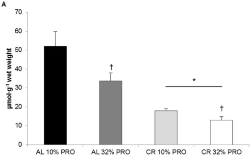 Intrahepatic triglyceride content. Values presented as mean ± SEM. * Main effect of energy status, calorie restriction (CR) different than ad libitum (AL); p < 0.05. † Main effect of protein (PRO), 32% PRO different than 10% PRO; p < 0.05.