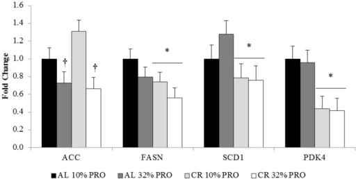 mRNA expression of lipogenic regulators. Values presented as mean ± SEM. * Main effect of calorie intake, CR different than AL; p < 0.05. † Main effect of protein intake, 32% PRO different than 10% PRO; p < 0.05. ACC: acetyl-CoA carboxylase; FASN: fatty acid synthase; SCD1: stearoyl-CoA desaturase; PDK4: pyruvate dehydrogenase kinase, isozyme 4.