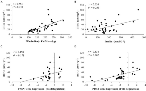 Correlation of intrahepatic triglycerides (IHTG) to whole-body fat (A); IHTG to serum insulin (B); IHTG to FASN gene expression (C); and IHTG to PDK4 gene expression (D). All correlations significant; p < 0.05.
