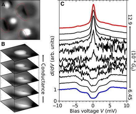 Influence of hydrogen-functionalized tips on imaging and spectroscopy.(A) Constant current STM image (approximately 5 × 5 nm2; V = −15 mV, I = 20 pA, G = 1.72 × 10−5G0) of CoH complexes on the h-BN/Rh(111) moiré obtained with a hydrogen-functionalized tip. Areas with enhanced contrast due to hydrogen in the junction are circled in red. (B) Constant current STM images (1.2 × 1.2 nm2; top to bottom: V = −0.3, −0.7, −1.0, −1.3, and −1.6 mV; I = 20 pA, corresponding to G = 8.60 × 10−4, 3.69 × 10−4, 2.58 × 10−4, 1.99 × 10−4, and 1.61 × 10−4G0) of a CoH complex highlighting the strong conductance (tip-sample distance) dependence of imaging with a hydrogen-functionalized tip. (C) Local spectroscopy obtained on the CoH complex in (B). The tip was centered on the bright lobe (G = 1.61 × 10−4G0). At G = 6.45 × 10−4G0 (blue), a set of double steps is observed, indicative of a spin 1 complex with magnetic anisotropy. Increasing the conductance in steps of ΔG = 0.16 × 10−4G0 leads to unstable spectra until a spin 1/2 Kondo peak emerges at high conductance (red; G = 12.9 × 10−4G0). All spectra are normalized to the differential conductance at −10 mV; normalized spectra are offset by 0.5. arb. units, arbitrary units.