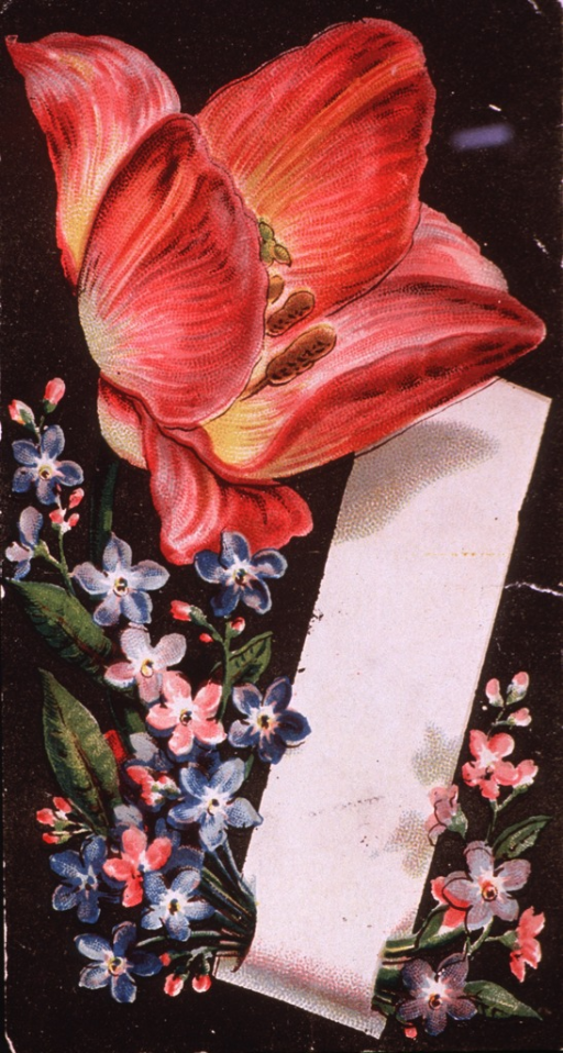 <p>The ability of the Galvanic Battery to cure many diseases apparently goes without saying, so what Boyd is offering here is a set of these illuminated cards with each purchase of his product.  Visual motif:  Floral arrangement.</p>