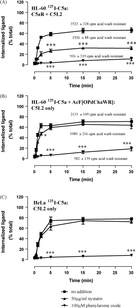 C5L2 in differentiated HL-60 and HeLa cells is responsible for internalizing C5a. Bt2cAMP-differentiated HL-60 and HeLa cells were loaded with 125I-C5a at 4 °C for 1 h and (where indicated) 10 μM of the C5aR antagonist AcF[OPdChaWR], 100 μM of phenylarsine oxide or 50 μg/ml nystatin, then extensively washed and shifted to 37 °C for the specified times. Cells were harvested and washed in acidic buffer to strip surface bound ligand. The results show uptake of radioactivity compared to controls incubated at 4 °C and are the mean ± S.E.M. of three to six separate experiments performed in duplicate. The amount of radioactivity actually internalized by HL-60 cells is shown for each condition. Significantly different from control at the same time-point by two-way ANOVA with Bonferroni post-test; *p < 0.05, ***p < 0.005.