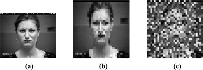 A corrupted image example (a) Original image of 640 × 490 pixels; (b) Resized image of 32 × 32 pixels; (c) 50% corrupted image.