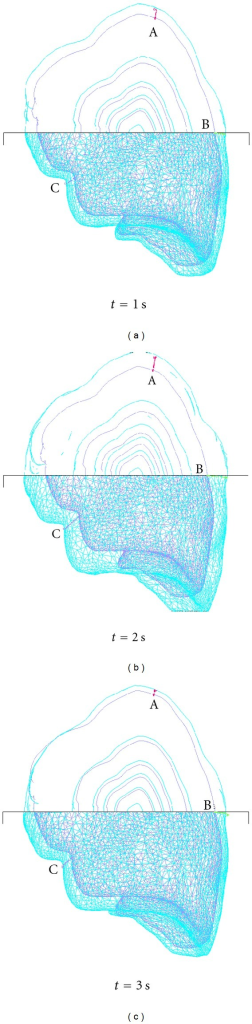 Predicted lung deformation with anisotropic YM.