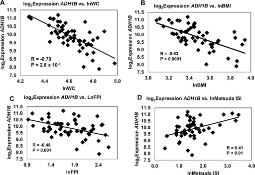 Correlation of ADH1B Expression with Key Traits (I).Log2 transformed gene expression measurements of ADH1B mRNA obtained by Illumina BeadArray were analyzed for correlation with A lnWC, B lnBMI, C lnFPI and D lnMatsuda Insulin Sensitivity Index. Variables were log transformed to minimize the issue of non-normality.