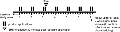 Challenge study design (Phase II).Lubricant was applied non-traumatically for three weeks, on two consecutive days per week. The animal was challenged with SHIVSF162p3 30 minutes after the sixth lubricant application (open triangle). To check for plasma viremia and virus shedding, samples were collected for at least 2 weeks post-peak viremia. Not shown are baseline blood draws that were performed before the first lubricant application to ensure that the animal is not infected.