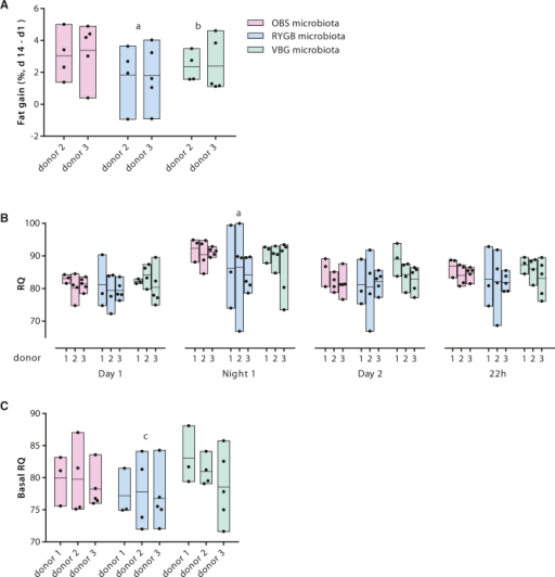 The Gut Microbiota Influences Fat Accumulation and Metabolism in Colonized Mice(A) Fat gain in mice colonized with human stools from OBS, RYGB, and VBG women. Fat gain was calculated as the difference between fat content normalized over body weight at the end of the experiment (d14) and fat content normalized over body weight 1 day after colonization (d1). The results presented were obtained from colonization of GF mice with fecal microbiota from two patients in each of the RYGB, VBG, and OBS groups (four to five mice per donor microbiota).(B) RQ (ratio between CO2 produced and O2 consumed) calculated for the light and dark phases and for the overall 22 hr period in the Somedic chamber.(C) RQ in the resting phase (basal RQ, calculated as the average RQ for the lowest 10 min average of O2 consumption).The results presented in (B) and (C) were obtained from colonization of GF mice with fecal microbiota from three patients in each of the RYGB, VBG, and OBS groups (3–5 mice per donor microbiota).Bars show the results of colonization with the same donor microbiota, with black dots showing individual mice and lines indicating the mean. Statistical significance of differences between the means was tested by one-way ANOVA with Tukey's correction for multiple comparisons (a p < 0.05 for RYGB compared to OBS, b p < 0.05 for VBG compared to OBS, and c p < 0.05 for RYGB compared to VBG). See also Figure S5.