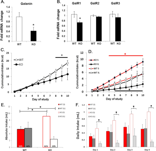 Altered nutrient reward in KO mice. Gene expression in WT and KO mice (n = 10–13) for LHA galanin (A., *pt-test < 0.01) and LHA galanin receptors (GalR1-3, B., *pt-test < 0.05). C. Cumulative Intralipid (IL) intake in KO and WT mice, 1 h/day access to 10% Intralipid over 10 days (n = 5; pANOVA < 0.001; *pHolm-Sidak < 0.05–0.001). D. Cumulative sucrose (S) and Intralipid intake KO and WT mice, 1 h/day access to a-choice of 10% Intralipid and 25% sucrose solutions (both 1 kcal/ml) over 10 days (n = 5–7; pANOVA < 0.0001; *pHolm-Sidak < 0.05–0.001). E. Total sucrose and Intralipid intake over 10 days in KO mice, while WT mice (n = 5–7, pANOVA < 0.001; * pHolm-Sidak < 0.01). F. Daily intake of sucrose and Intralipid during the first 4 days shows that sucrose preference is prevalent on day 1 in naïve KO mice (pANOVA < 0.05; *pHolm-Sidak < 0.02). WT = wildtype; KO = knock out, LHA = lateral hypothalamic area.