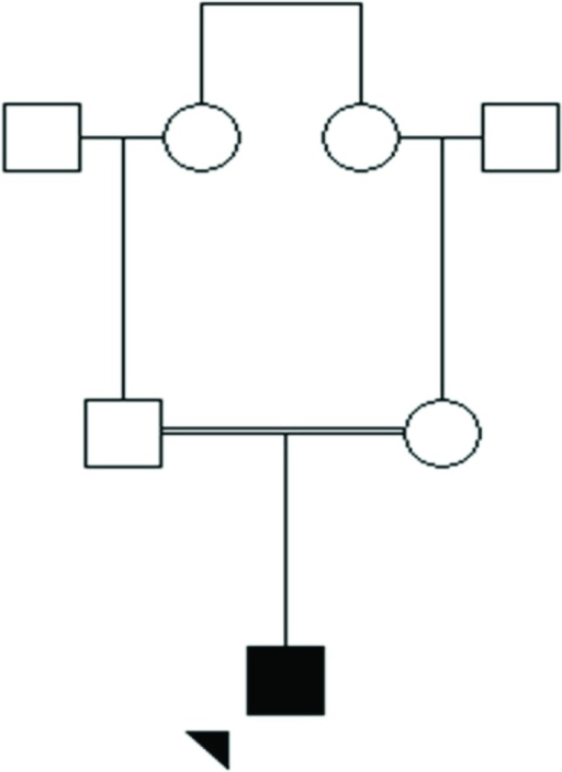 Family Pedigree of the Patient