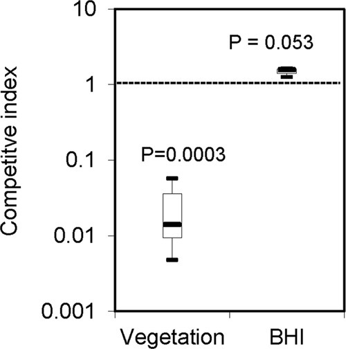 Attenuation in competitive index in vivo but not in vitro in the nox mutant. Vegetation, bacteria obtained from rabbit heart vegetation postinoculation; BHI, bacteria cultured in BHI broth. Data were obtained at least in biological triplicate.