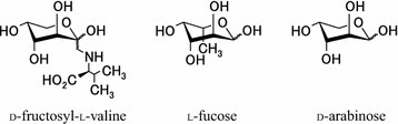 Comparison of structural formulas of fructosyl valine and the known ligands of AAL