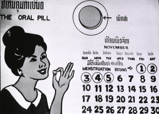 <p>Poster showing a calendar page for the month of November and a woman about to take a birth control pill.</p>