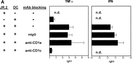 Th1 cytokine production during JR.2:DC coculture is CD1c dependent. (A) JR.2 γ/δ T cells were incubated with immature DCs for 24 h in the presence of blocking mAbs against CD1a, CD1c, or an isotype-matched control antibody. The culture supernatants were collected and assayed for TNF-α, IFN-γ, IL-4, and IL-13. Note that production of both TNF-α and IFN-γ was inhibited by mAb against CD1c but not CD1a. IL-4 and IL-13 were not detected (data not shown). The sensitivity of the assay was 30 pg/ml. (B) Maturation of DCs by JR.2 is partially mediated by TNF-α. Immature DCs were cultured for 48 h in medium or with γ/δ clone JR.2 (T cell:DC ratio = 1:10) in the presence of blocking mAbs against TNF-α or IFN-γ. DC up-regulation of CD83 and CD86 was inhibited by the presence of mAbs against TNF-α but not IFN-γ. The combination of mAbs against both TNF-α and IFN-γ was similar to the effect seen with TNF-α mAbs alone. These results are representative of four independent experiments using different DC donors.