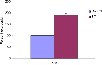 The effects of ST pretreatment on p53 on UVB-irradiated skin tumors of SKH-1 hairless mice. Values represent mean ± SE derived from at least three mice. Values of ST are percentages of control values quantitated by densitometry.