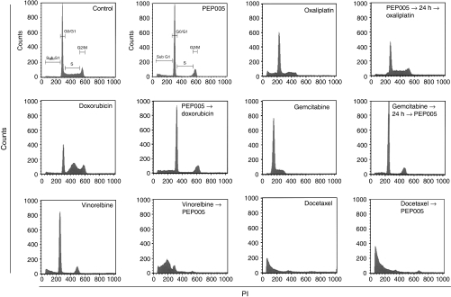 Cell cycle effects of anticancer agents alone and in combination with PEP005. Cells were incubated with the indicated drug sequence at IC50 concentrations, washed, and analysed by flow cytometry at 24 h post-incubation in drug-free medium.