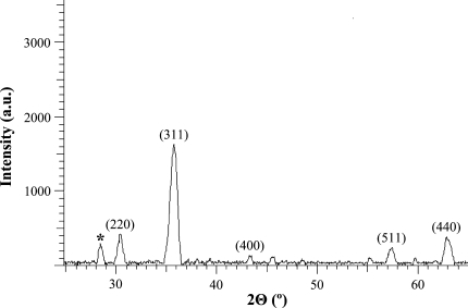 X-ray diffractogram of SPIONs. The pattern shows characteristic peaks of iron oxide maghemite (γ-Fe2O3). * Peak possibly due to an Fe–Si compound