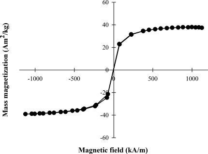 Hysteresis loop of SPIONs obtained by a magnetometer. Mass magnetization and absence of magnetic behavior when not exposed to an external magnetic field indicate their suitability for use in biomedical applications. Data are presented for a representative sample