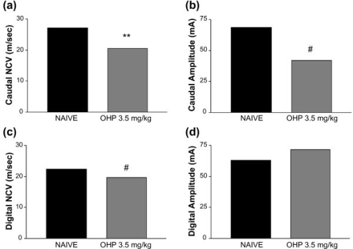 Oxaliplatin (OHP) decreases NCV in caudal and digital nerves. (a) Mice treated with oxaliplatin 3.5 mg/kg/iv twice weekly for four weeks (gray bars; n = 8) had a significant decrease in caudal NCV compared to naïve mice (black bars; n = 8). (b) The oxaliplatin-treated mice had a significant decrease in caudal nerve action potential amplitude compared to naïve mice. (c) The oxaliplatin-treated mice had a significant decrease in digital NCV compared to naïve mice. (d) The oxaliplatin-treated mice had no difference in the amplitude of the digital nerve action potential compared to naïve mice. **p < 0.0001 vs. naive, #p < 0.001 vs. naive, Student's T Test.