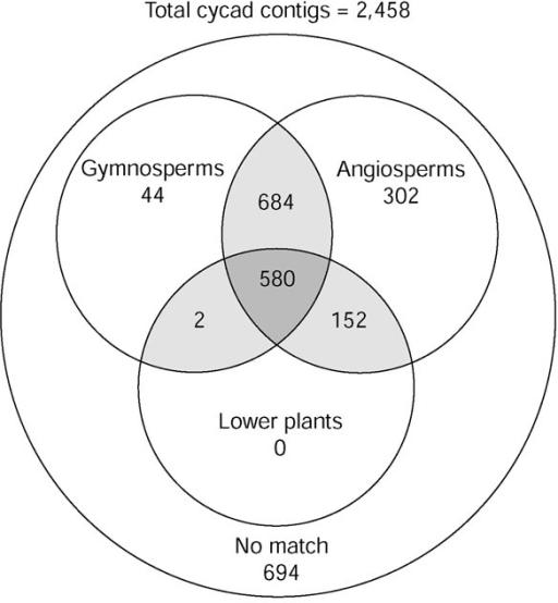 Gymnosperms vs angiosperms venn diagram geccetackletarts gymnosperms vs angiosperms venn diagram ccuart Image collections