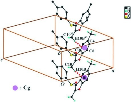 A view of the C—H···π interactions (dotted lines) in the crystal structure of the title compound. H atoms not participating in hydrogen bonding were omitted for clarity. [Symmetry codes: (iii) x, y - 1, z; (vi) x, y + 1, z.]